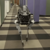 Introducing Spot  - A Robot Dog